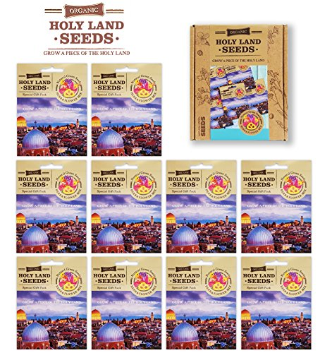 HOLY LAND Gifts Greeting Cards with Organic Non-GMO Flower Seeds and Herb seeds (10 pack) | Mix of Organic Flower Seeds and Herb Seeds Packed into Greeting Cards| greeting Cards Box Set