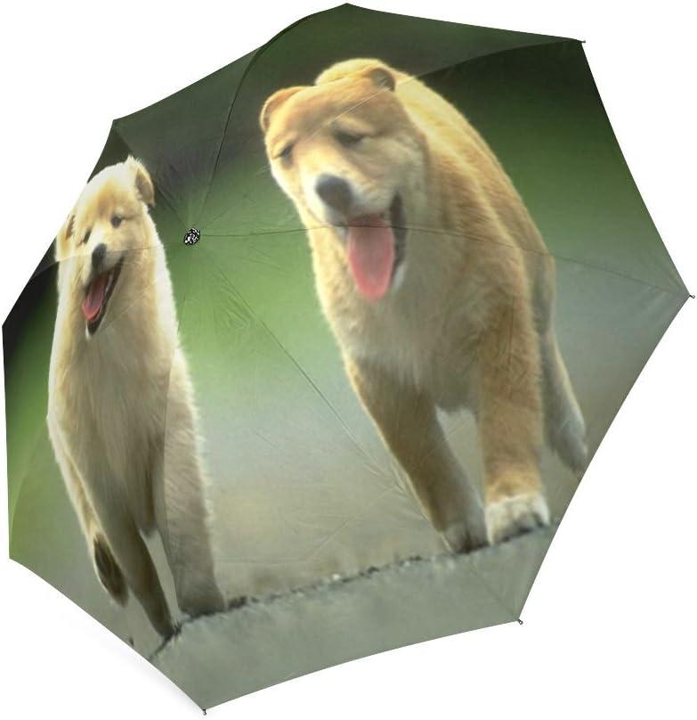 Custom Cute Puppy Dogs Compact Travel Windproof Rainproof Foldable Umbrella