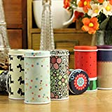 Namivad Metal Candy Trinket Tin Jewelry Iron Tea Coin Storage Box Container 3.8 x 7.3cm