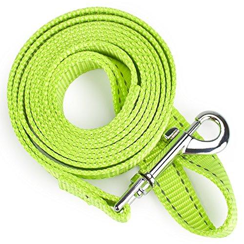 - Weebo Pets Reflective Nylon Safety Leash (6 ft.)