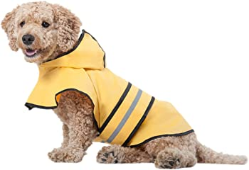 Ethical Pet Fashion Raincoat with Hood for Small Dogs (Medium)