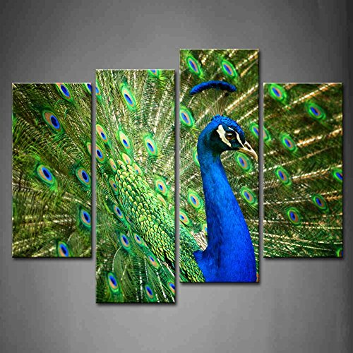 Show Off Peacock - First Wall Art - 4 Panel Wall Art Blue Proud Male Asian Peacock Shows Off His Fascinating Plumage Painting Pictures Print On Canvas Animal The Picture For Home Modern Decoration piece (Stretched By Wooden Frame,Ready To Hang)