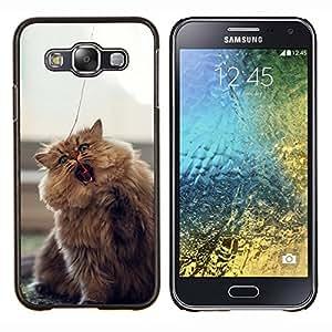 LECELL--Funda protectora / Cubierta / Piel For Samsung Galaxy E5 E500 -- Gato que juega --