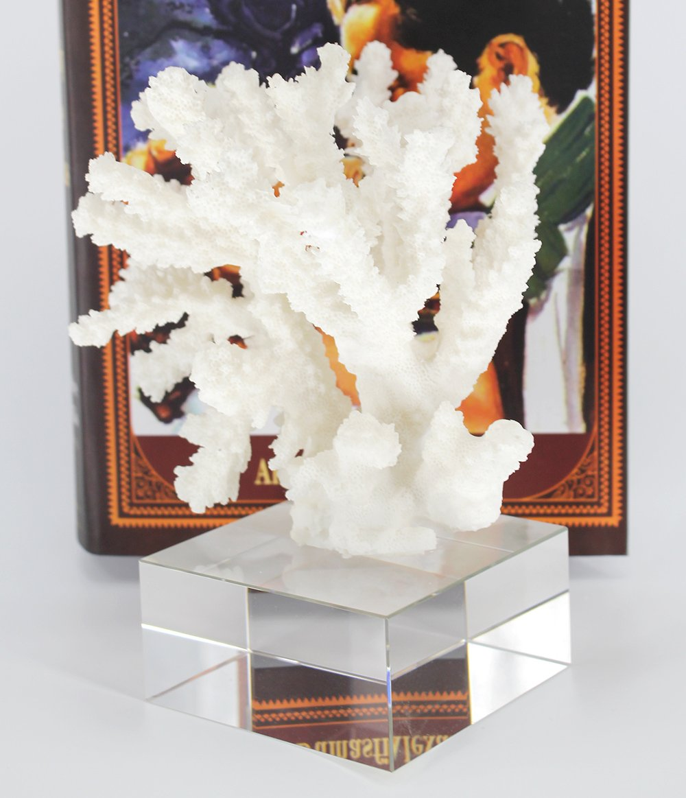 COMLZD White Resin Coral Ornament on Clear Crystal Base Tabletop Decorative Accent Home Office Collection