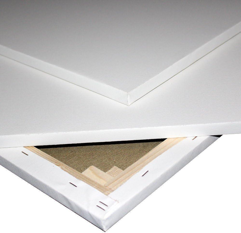 Lienzo para pintar de algodón con marco de 1,7 cm y grapas traseras 70x100cm: Amazon.es: Hogar