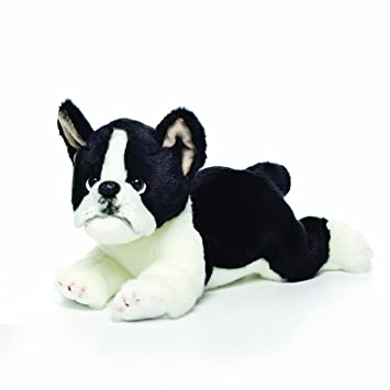 Amazon Com Nat And Jules Laying Large Boston Terrier Dog Children S