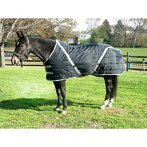 Pony Blanket Stable - High Spirit Snuggie Pony Stable Blanket, 64-Inch, Black/Silver
