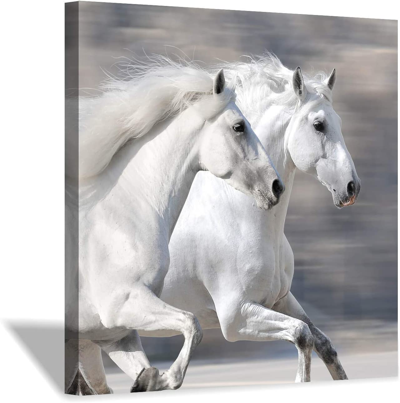 "Hardy Gallery White Horse Picture Wall Art: Running Animal Artwork Painting Print on Wrapped Canvas for Living Room or Office (36"" x 36"" x 1 Panel)"