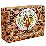 coffee bar soap - Tierra Mia Organics Almond Coffee Exfoliating Body Bar Soap, 3.8 Ounce