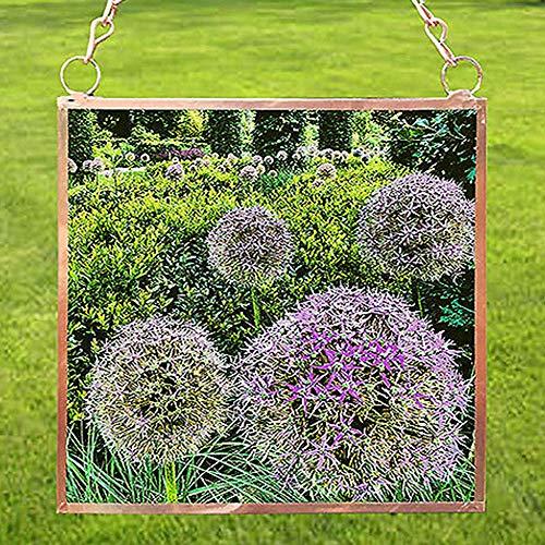 Sun Catcher, Purple Puff Flower, Copper Framed Glass, 4