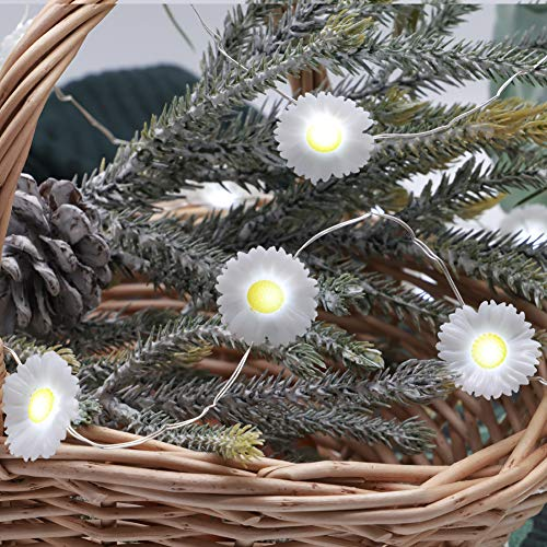 MIYA LIFE Easter Daisy String Lights 10 ft 40 LEDs Copper Wire with The Remote &Timer for Spring Patio Birthday Thanksgiving Seasonal Themed Parties Home Decor (White (Daisy Strings)
