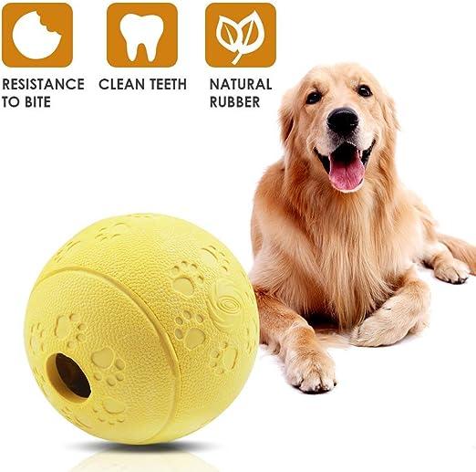 Wimaha Pelota de Juguete para Perros no tóxica para Perros Gatos Pelota para Limpiar los Dientes de Tus Mascotas para darles Alimentos: Amazon.es: Productos para mascotas