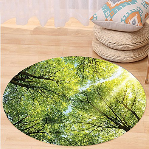 The Shining Costume Scene (VROSELV Custom carpetFarm House Decor Collection The Warm Spring Sun Shining Through the Canopy of Tall Beech Trees Romantic Scene Bedroom Living Room Dorm Green Yellow Round 79 inches)