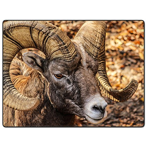 TSlook 50x80 Blankets Funny Bighorn Sheep Comfy Funny Bed (Bighorns Tail Light Covers)