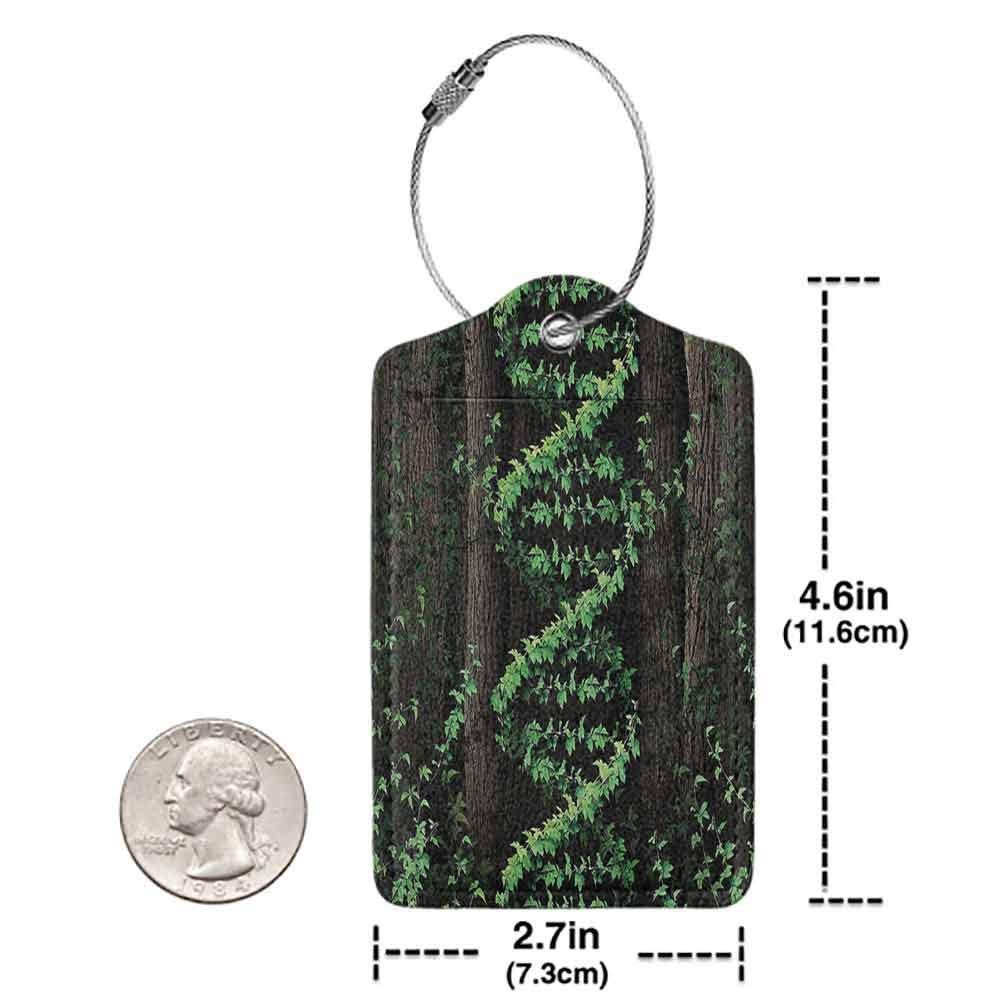 Waterproof luggage tag Nature Mystic Forest Tropic Trees Leaves Ivy Wild Botanic Artwork Print Photo Soft to the touch Dark Brown Hunter Green W2.7 x L4.6