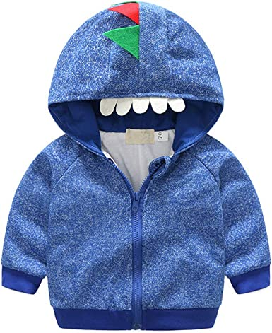 TAIYCYXGAN Baby Toddler Boys Dinosaur Hoodies Sweatshirt Kids Cotton Pullover Sweaters Winter Clothes
