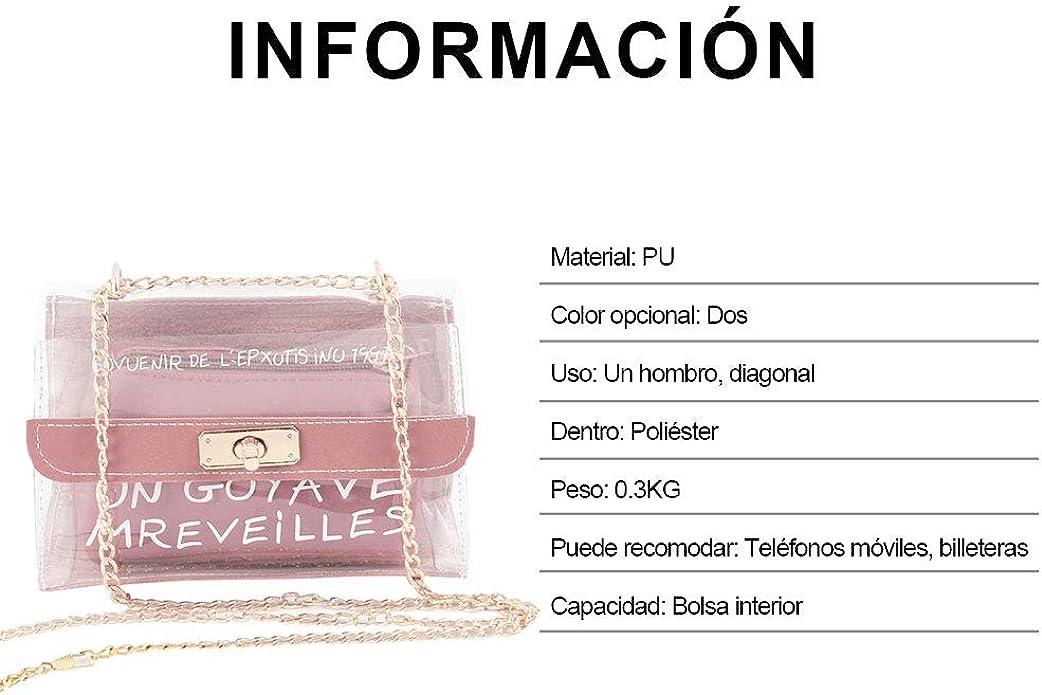 BOTTLEWISE Bolso Bimba y Lola Transparente PVC Mujeres Señoras Bandolera Desigual de Hombro negro rosa marrón Plástica pequeño New York(Rosa): Amazon.es: Zapatos y complementos