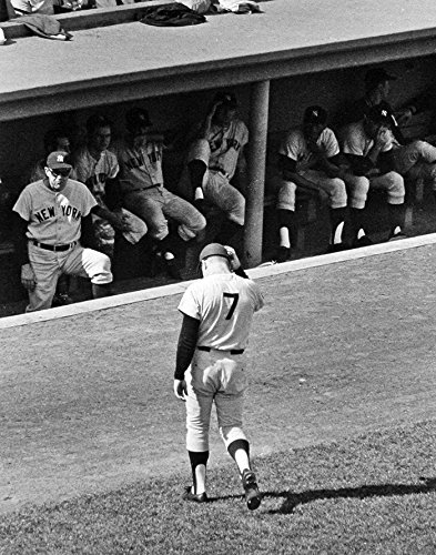 New York Yankees Mickey Mantle Last at Bat At Fennway Park, 8x10 Photo
