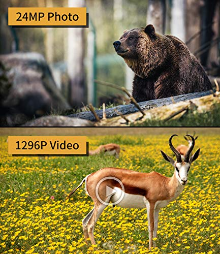 XTU WiFi Trail Camera 24MP 1296P Game Hunting Camera with Infrared Night Vision Motion Activated Waterproof for Wildlife Monitoring, 32GB SD Card Included