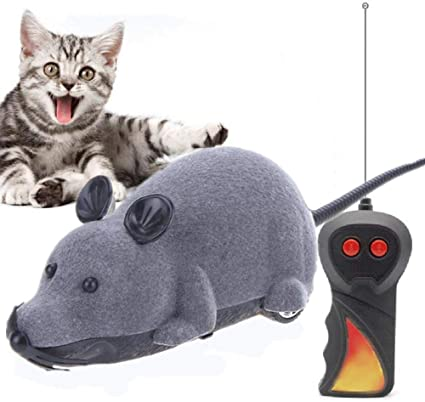 Kuozen Remote Control Mouse For Cats Presents For Cats Cat For Indoor Cats Interactive Kitten Toys For Indoor Cats Cat Toy Cat Toys Grey Amazon Co Uk Kitchen Home
