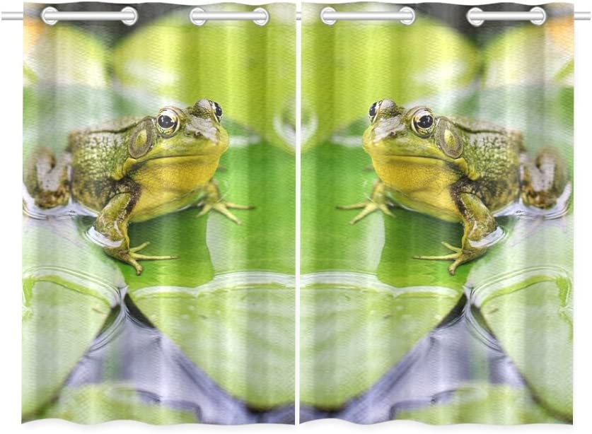 Enevotx Bull Frog Green Pond Lily Pad Frog Unique Kitchen Decor Collectio Treatment Panel Kitchen Curtains Set Of 2 Total 52 X 39 Home Kitchen