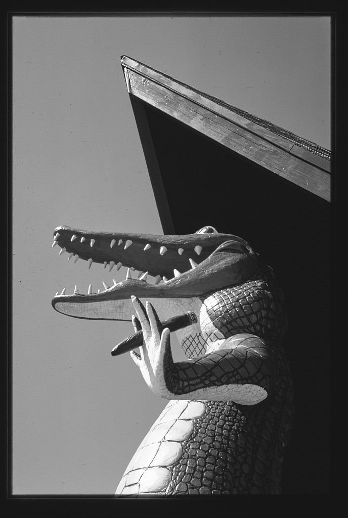 8 x 12 BW Photo of: Gatorland Zoo alligator statue, Route 1, St. Augustine, Florida 1979 Roadside America Margolies, John, photographer 27s