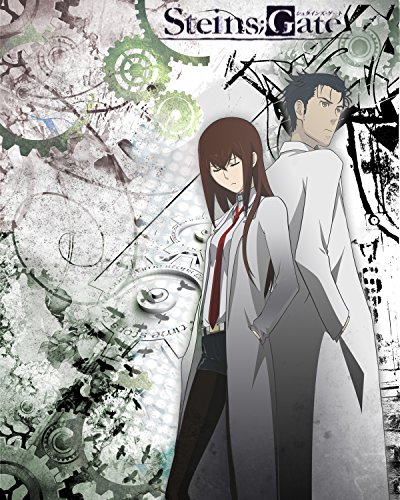 Steins Gate Poster Anime Kurisu Wall Scroll Home Decor Makise Promo 16x20 Inches