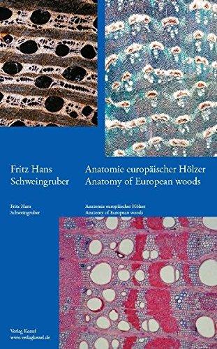 Anatomie europäischer Hölzer - Anatomy of European Woods