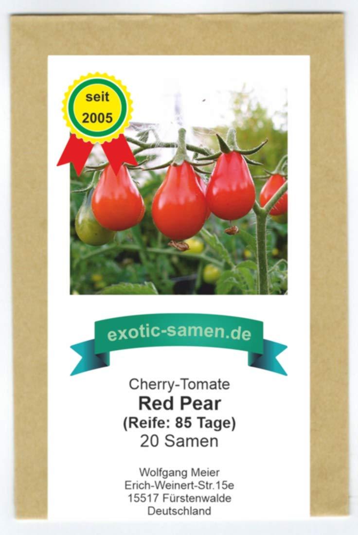Black Pear Tomate 10 Samen schwarzes Birnchen