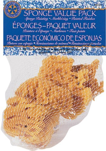 Plaid Sponge Value Pack, 30149 (Set of 4) (Limited Edition)