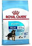 Royal Canin 35232 Maxi Junior 15 kg – hundfoder