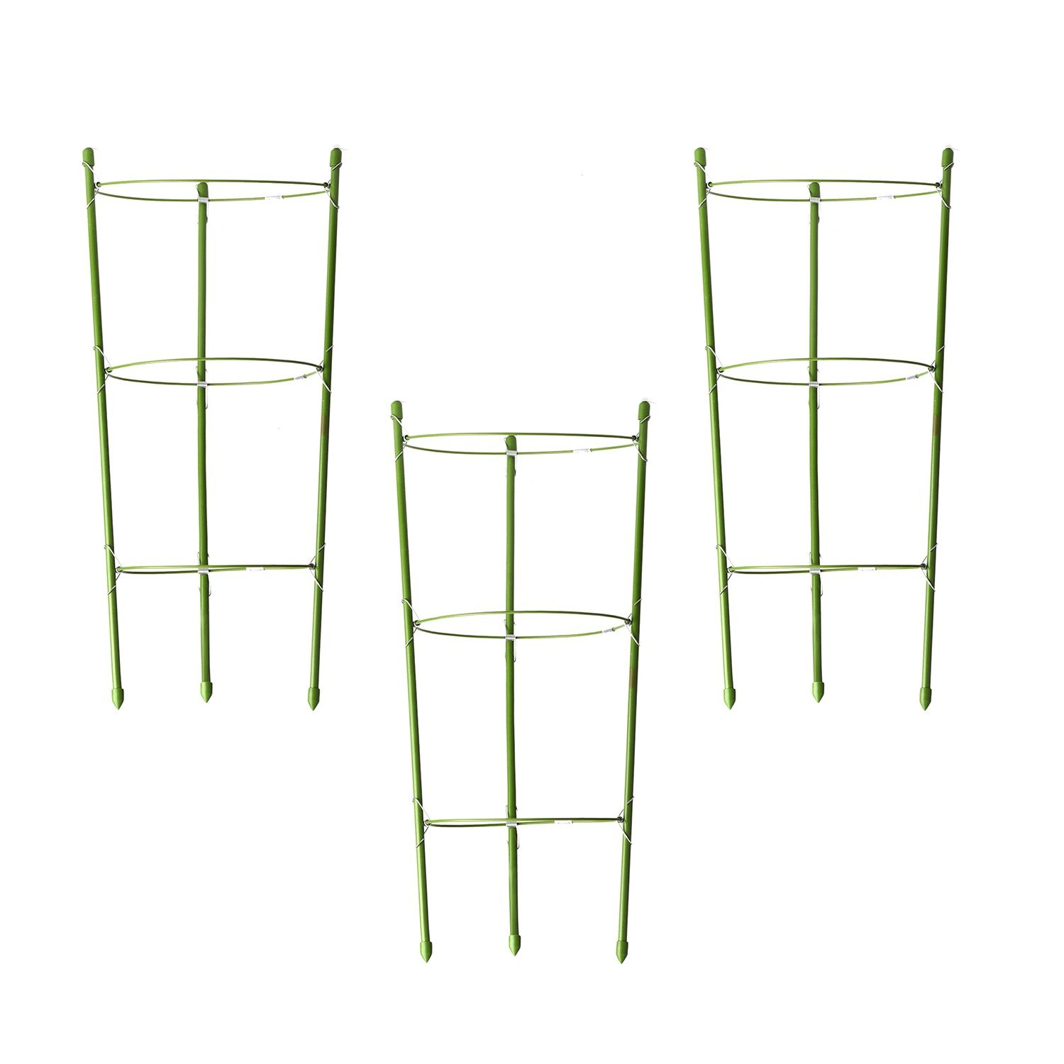 Funseedrr Garden Plant Supports Rings Treils for Plant Flower, with 3 Adjustable Rings(3 set)