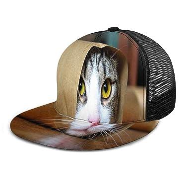 Gorras clásicas para Adultos con diseño de Gatito en un Rollo de ...