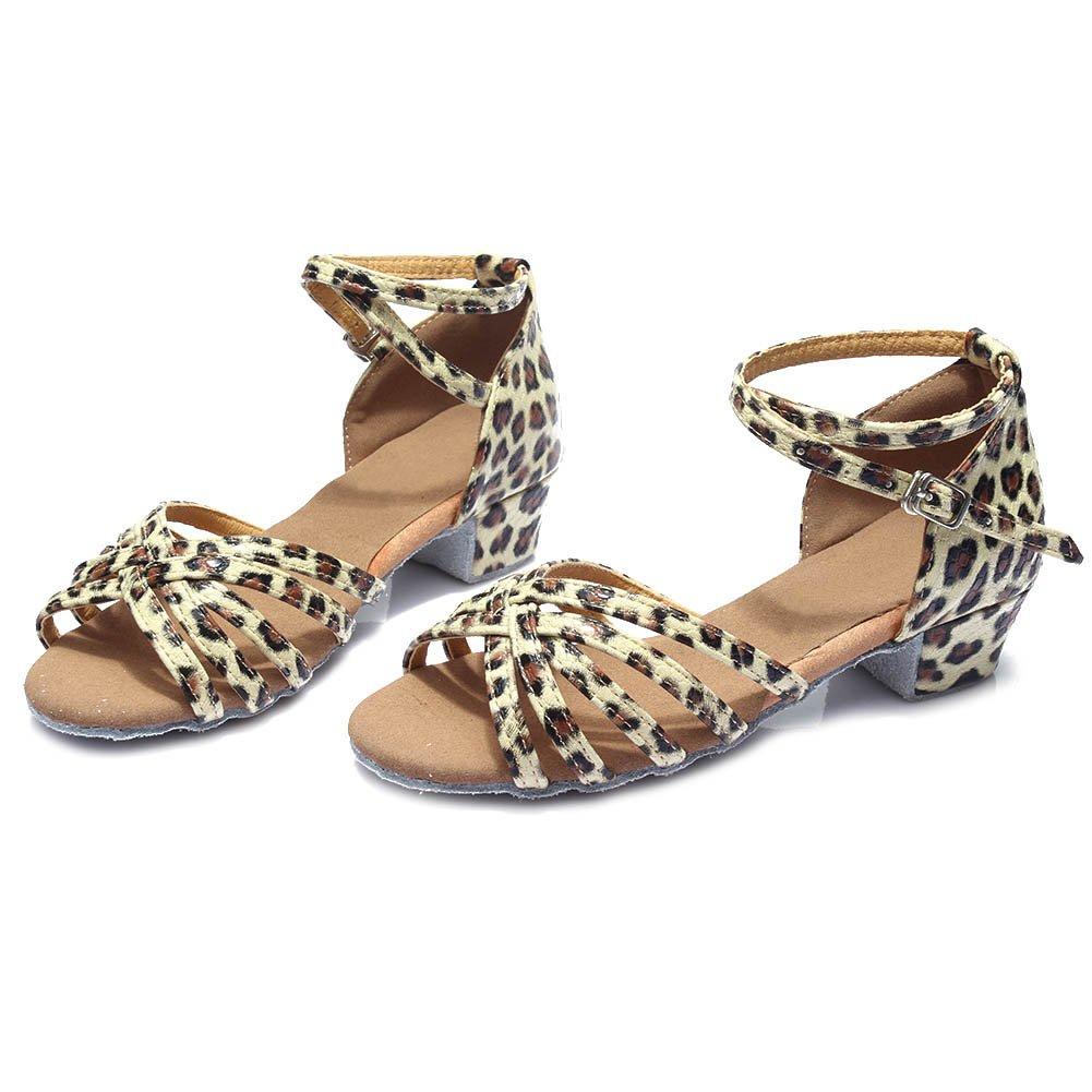 HIPPOSEUS Girls Satin Latin Dance Shoes Ballroom Dancing Shoes,Model U202