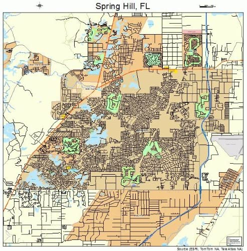 Map Of Spring Hill Florida Amazon.com: Large Street & Road Map of Spring Hill, Florida FL
