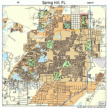 Map Of Spring Hill Florida.Amazon Com Large Street Road Map Of Spring Hill Florida Fl