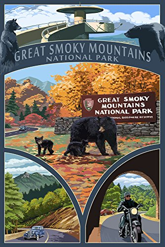 (Great Smoky Mountains National Park, Tennesseee - Montage (9x12 Art Print, Wall Decor Travel)