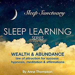 Wealth & Abundance: Law of Attraction for Success: Hypnosis, Meditation & Affirmations Audiobook