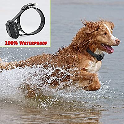Petronics 990ft Rechargeable and Waterproof Remote Dog Electric Training Shock Collar for Dogs