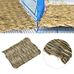 Grass Mat Woven Bed Mat for Small Animal Bunny Bedding Nest Chew Toy Bed Play Toy for Guinea Pig Parrot Rabbit Bunny Hamster Rat(Pack of 3) (3 Grass mats) 12