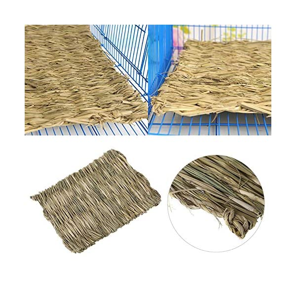 Grass Mat Woven Bed Mat for Small Animal Bunny Bedding Nest Chew Toy Bed Play Toy for Guinea Pig Parrot Rabbit Bunny Hamster Rat(Pack of 3) (3 Grass mats) 4