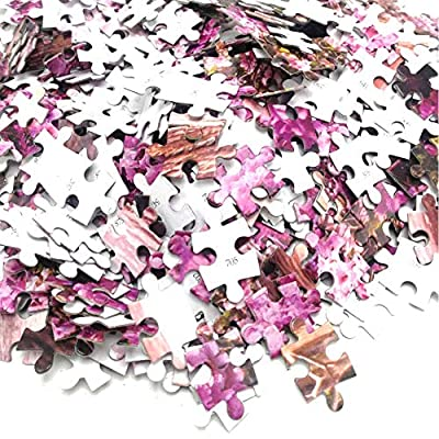 Sun Cling 1000 Piece Jigsaw Puzzles for Adults Kids Puzzle Sets for Family, Cardboard Puzzles, Educational Games, Brain Challenge Puzzle for Kids Childrens: Home & Kitchen