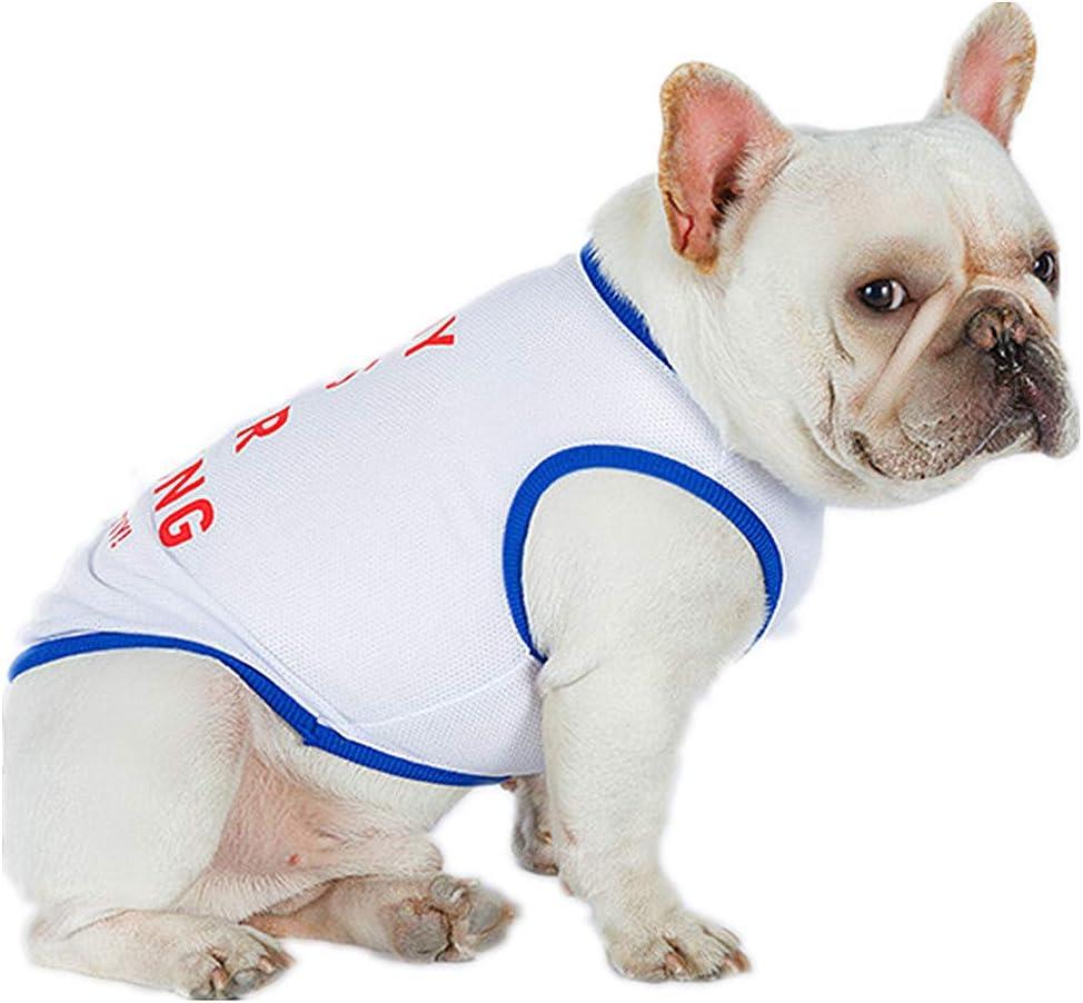 PZSSXDZW Ropa para Mascotas Chaleco de Perro Nueva Ropa de Verano ...