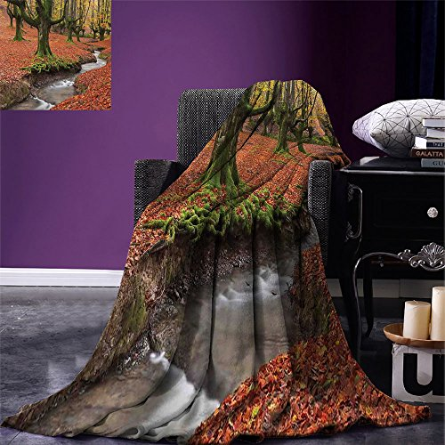 smallbeefly Landscape Digital Printing Blanket Flowing Stream Colorful Autumn Forest Leaves Gorbea Natural Park Spain Summer Quilt Comforter Paprika and Green by smallbeefly