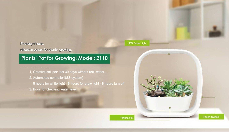 Amazon.com : Spigo Indoor LED Light Grow Garden, Pearl White ...