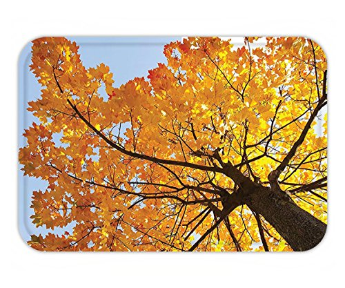 ves Decor Autumn Maple Tree from the Bottom to Top View Environment Flora Season November Print Decor Orange Blue (Grand Flora Stone)