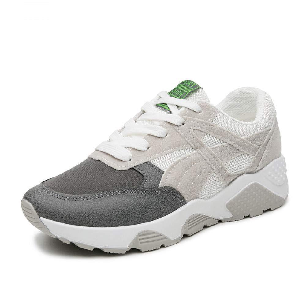 ac26a0f0b5114 Amazon.com: JIAODANBO New Spring and Autumn Korean Women's Shoes ...