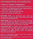 BSN SYNTHA-6 Whey Protein Powder, Micellar