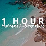 1 Hour Of Maldives Ambient Music