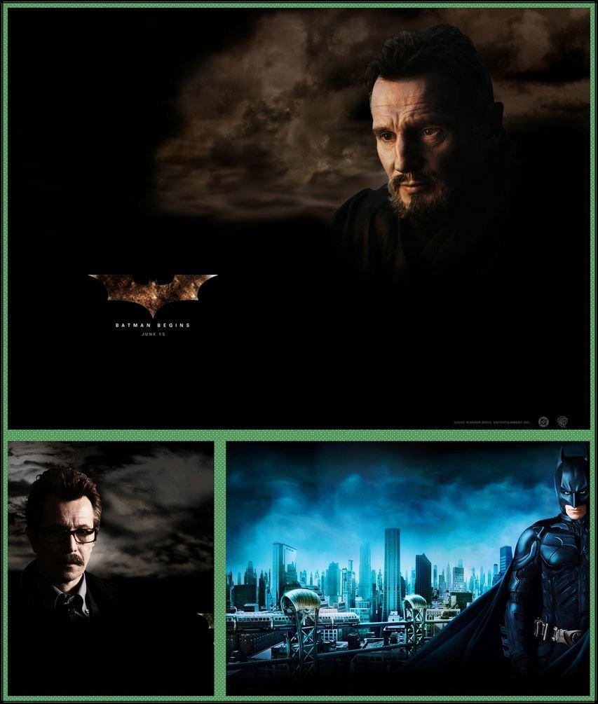 Batman Begins 037 Waterproof Plastic Poster Cartel de ...
